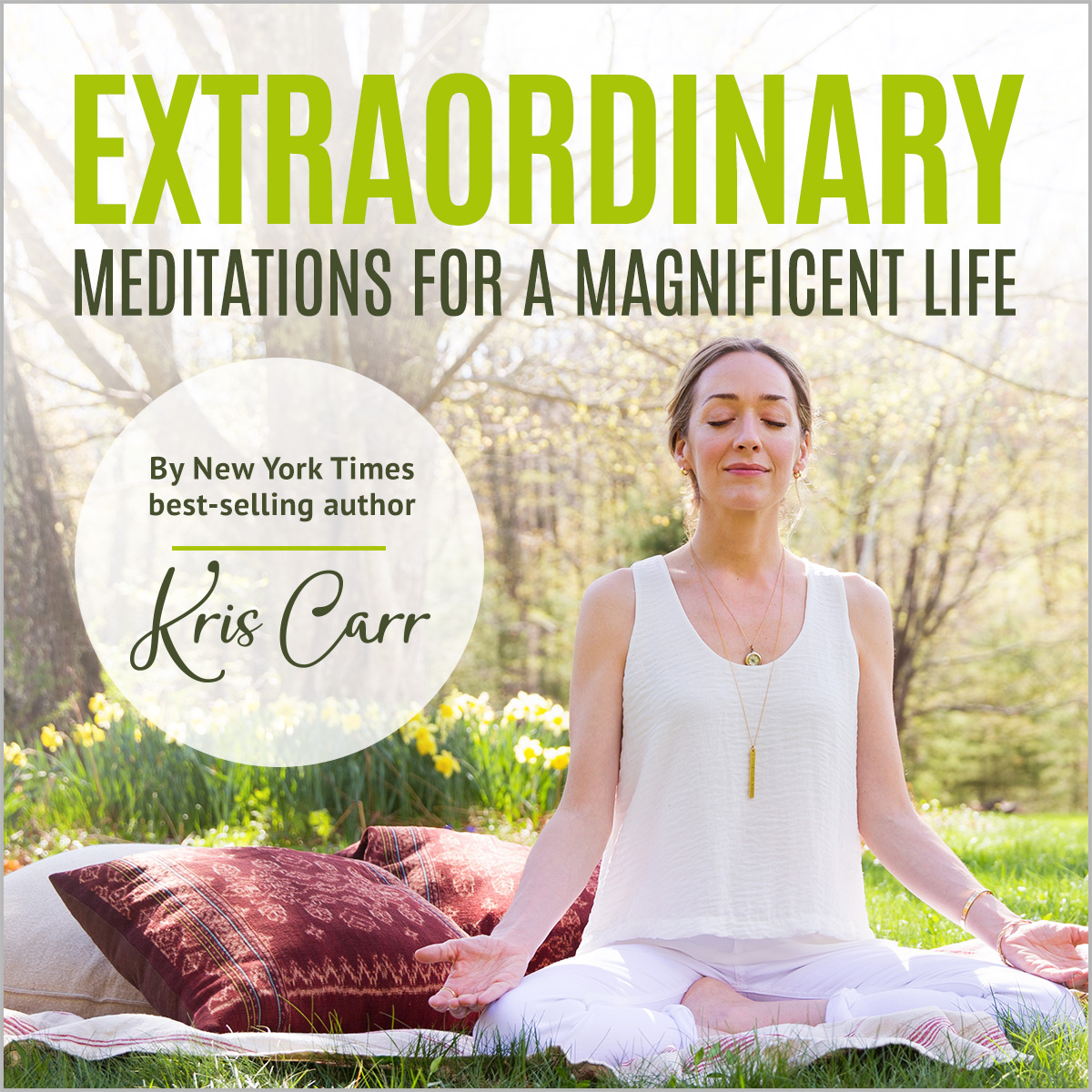 Extraordinary Meditations Album